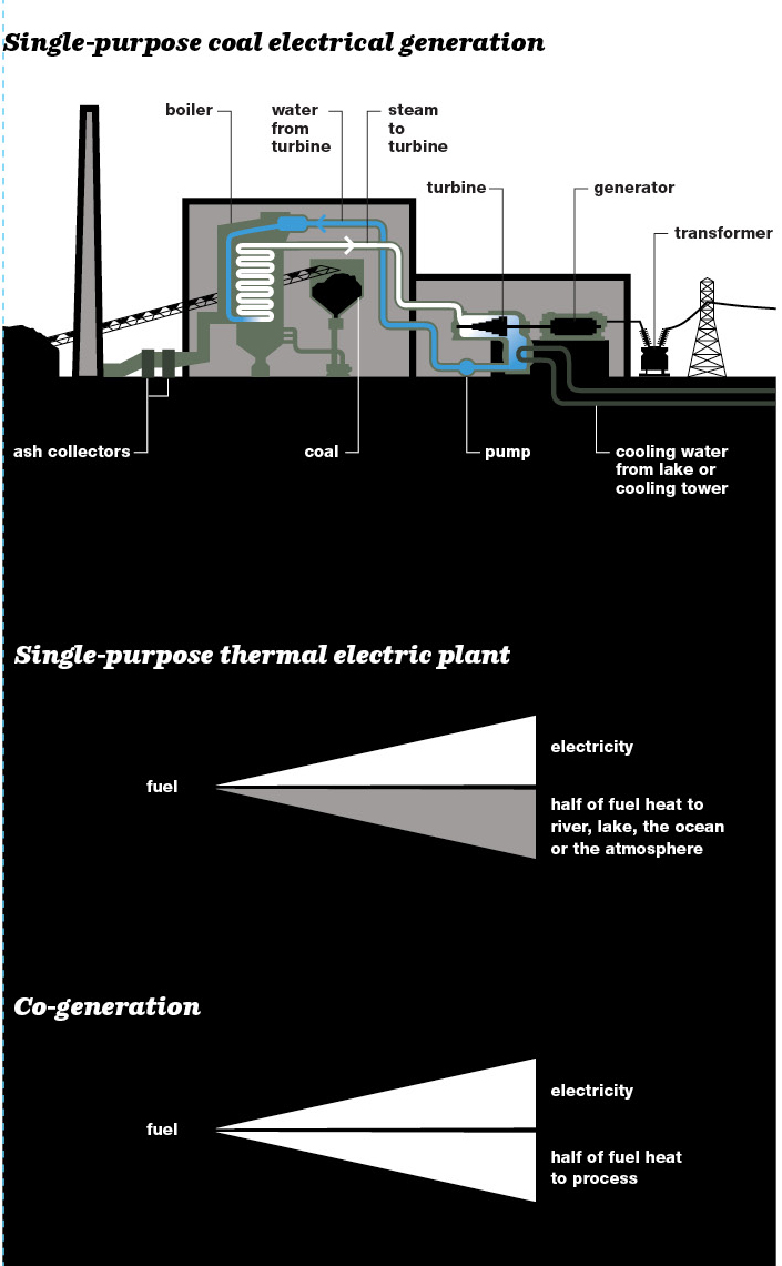 Single-purpose coal electrical generation